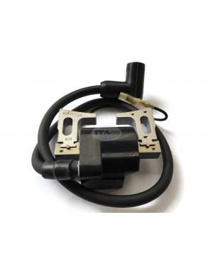 Ignition Coil CDI CD.I C.D.I Magneto Module Assy 234-70124-21 for Robin Subaru EY28 EY28D EY28B Wisconsin Engine