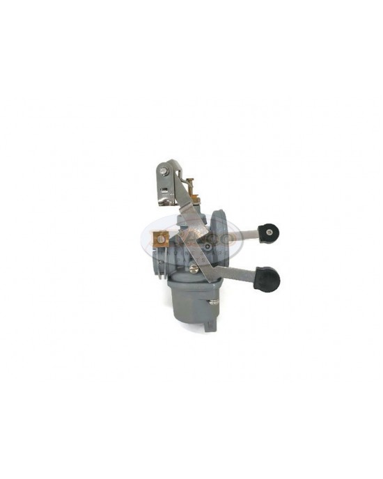 Boat Motor T3.6-04000500 Carburetor Assembly for Parsun Outboard 3.6HP 2.5HP 2T